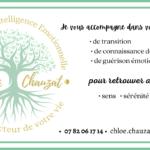 chloe-chauzat-bandeau-services